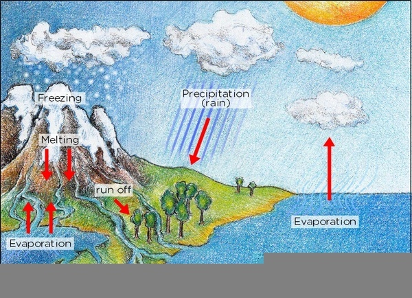 Thunderbolt kids the water cycle ccuart Images