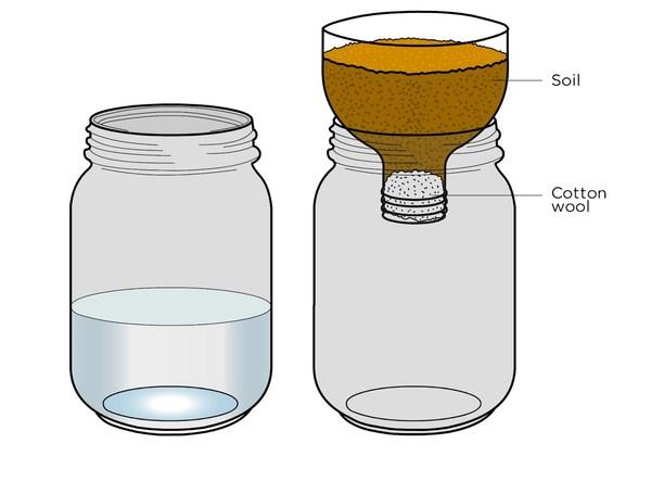Thunderbolt kids for Soil jar experiment